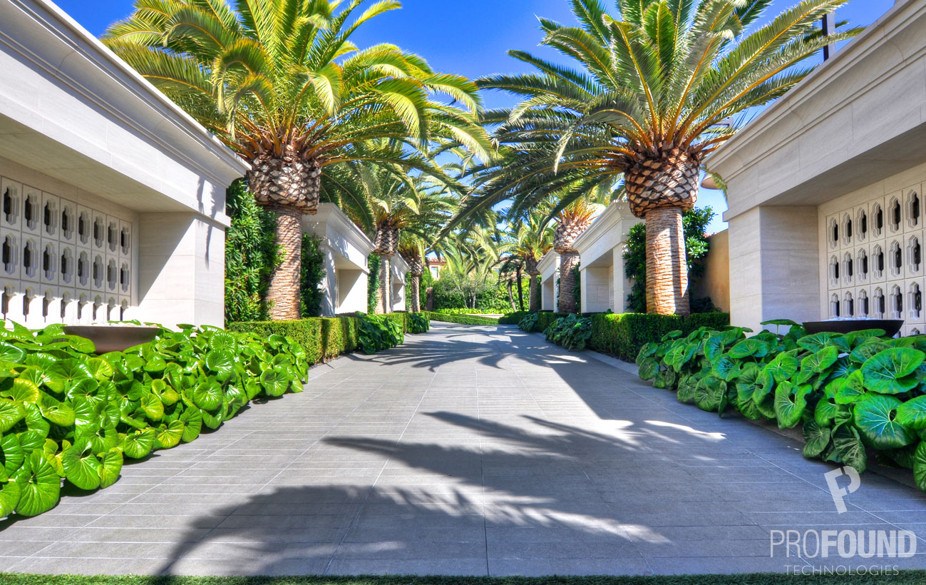 Driveway of California Based Residence with Palm Trees
